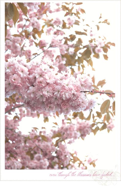 May_18_4B