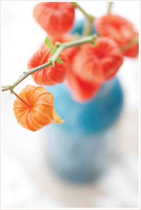 Orange_3