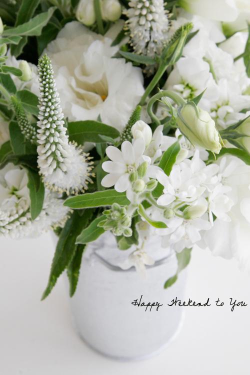 a creative mint friday flowers, Beautiful flower