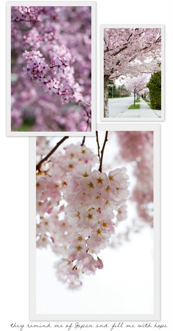 BlossomsB